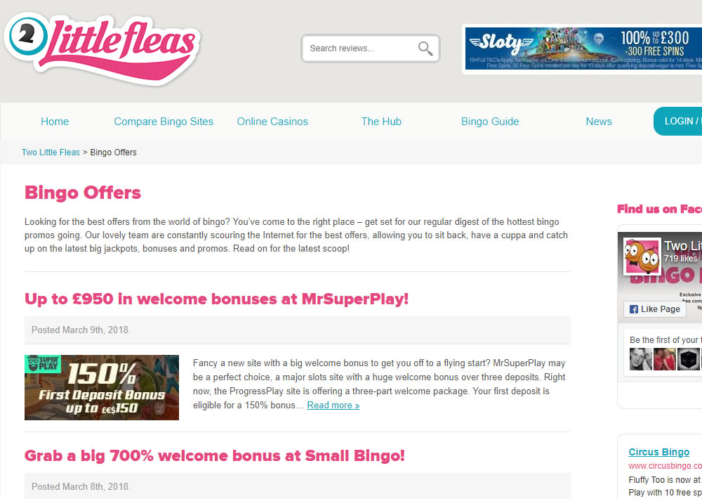 online bingo news guides reviews content